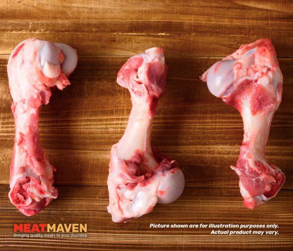 Pork Humerus Bone - Raw sample